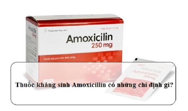 amoxicillin la thuoc gi nhung dieu can luu y khi su dung amoxicillin 2 - Amoxicillin là thuốc gì? Những điều cần lưu ý khi sử dụng Amoxicillin