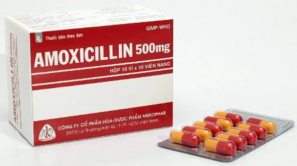 amoxicillin la thuoc gi nhung dieu can luu y khi su dung amoxicillin - Amoxicillin là thuốc gì? Những điều cần lưu ý khi sử dụng Amoxicillin