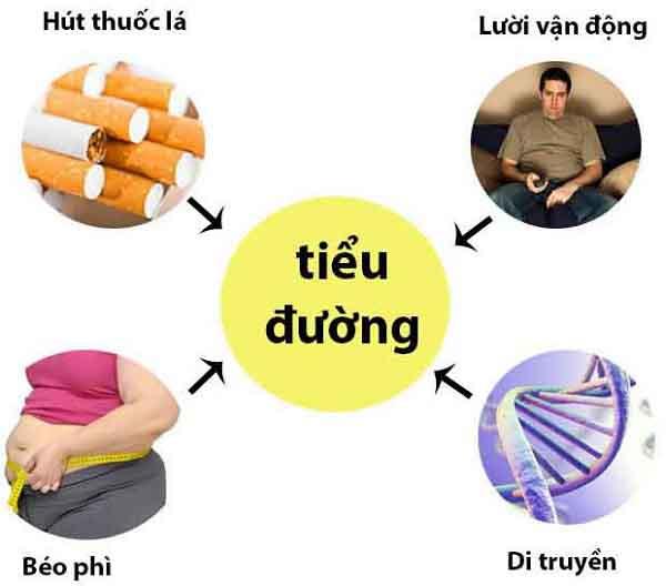 benh tieu duong la gi nguyen nhan trieu chung cach dieu tri 1 - Bệnh tiểu đường là gì? Nguyên nhân, Triệu chứng, Cách điều trị
