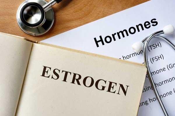 estrogen la gi tac dung cua estrogen doi voi phu nu - Estrogen là gì? Tác dụng của Estrogen đối với phụ nữ