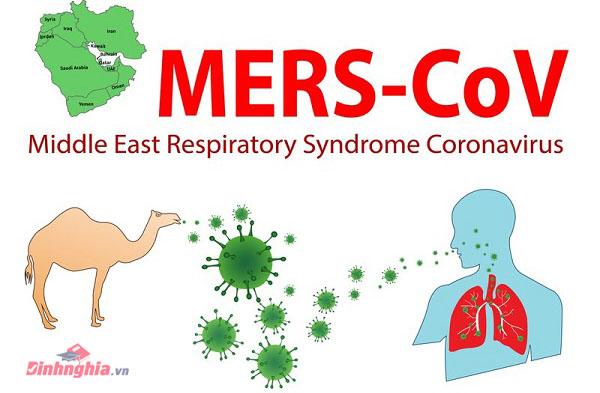 mers la benh gi hoi chung ho hap trung dong la gi - Mers là bệnh gì? Hội chứng Hô hấp Trung Đông là gì?