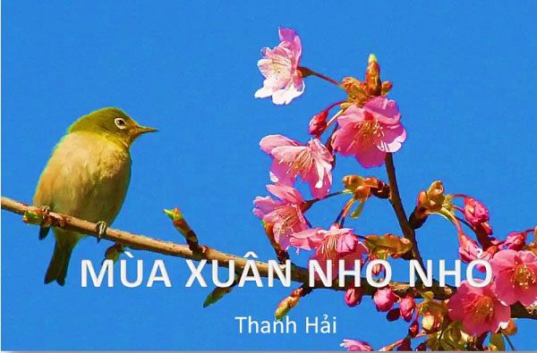 phan tich bai tho mua xuan nho nho cua thanh hai – ngu van 9 - Phân tích bài thơ Mùa xuân nho nhỏ của Thanh Hải – Ngữ Văn 9