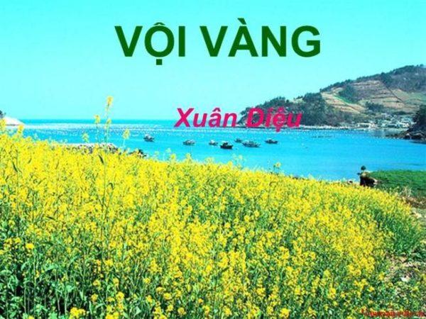 phan tich va soan bai tho voi vang cua xuan dieu – ngu van 11 1 - Phân tích và Soạn bài thơ Vội vàng của Xuân Diệu – Ngữ Văn 11
