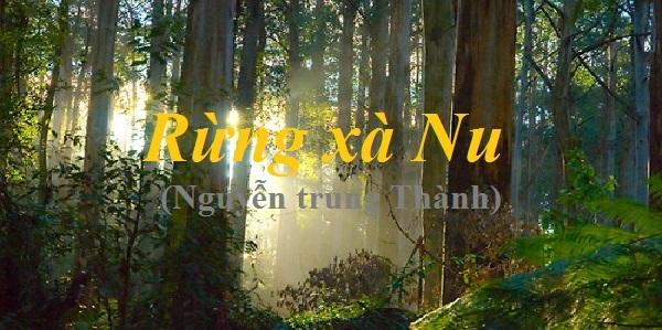 phan tich ve dep su thi cua nhan vat tnu trong rung xa nu 2 - Phân tích vẻ đẹp sử thi của nhân vật Tnú trong Rừng Xà Nu