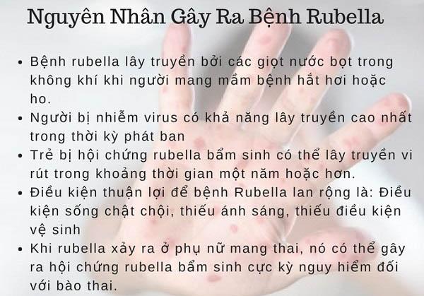 rubella la benh gi nguyen nhan trieu chung va phuong phap dieu tri 2 - Rubella là bệnh gì? Nguyên nhân, Triệu chứng và Phương pháp điều trị
