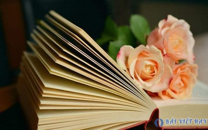 ban ve cai dep trong van hoc - Bàn về cái đẹp trong văn học
