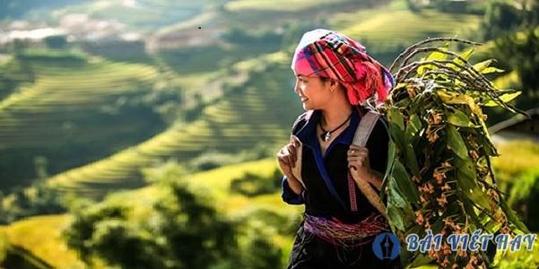 cam nhan ve am huong ca dao dan ca trong bai tho viet bac - Cảm nhận về âm hưởng ca dao dân ca trong bài thơ Việt Bắc