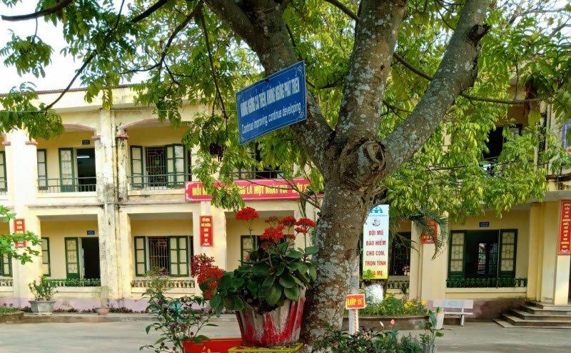 canh truong em vao buoi sang mua thu - Tả quang cảnh trường em vào buổi sáng mùa thu - 3 bài văn mẫu miêu tả trường học ngắn gọn
