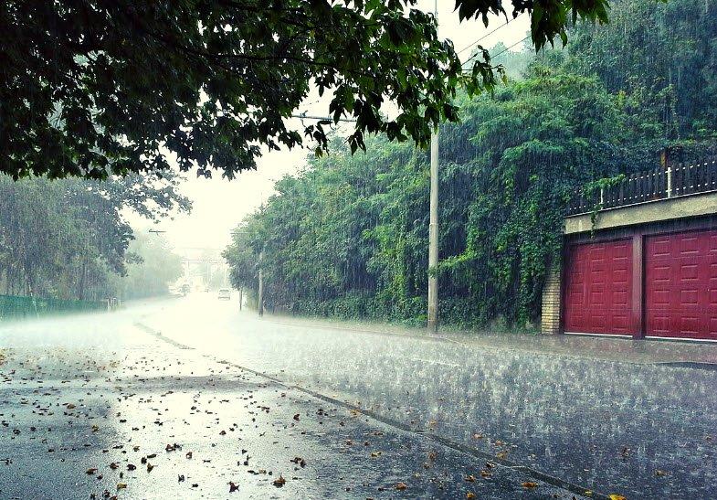 con mua rao - Tả cơn mưa rào lớp 5 hay nhất - 3 bài văn miêu tả cơn mưa rào mùa hạ ngắn gọn