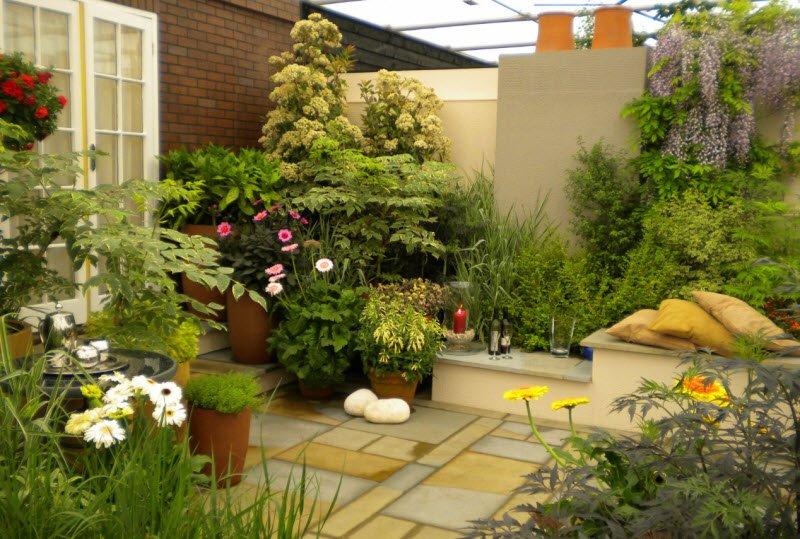 khu vuon buoi sang 1 - Tả khu vườn vào buổi sáng lớp 5 hay nhất - 3 bài văn miêu tả vườn cây, vườn hoa nhà em