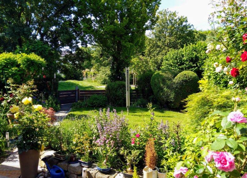 khu vuon buoi sang - Tả cảnh một buổi sáng trong một vườn cây, khu vườn lớp 5 hay nhất - 4 bài văn miêu tả khu vườn ngắn gọn