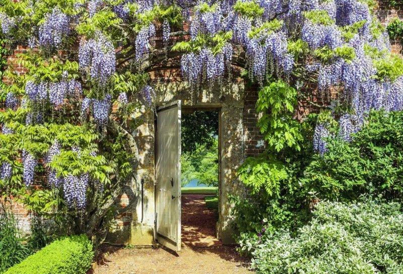 khu vuon cay vao buoi sang - Tả cảnh một buổi sáng trong một vườn cây, khu vườn lớp 5 hay nhất - 4 bài văn miêu tả khu vườn ngắn gọn