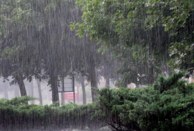 mua rap - Tả cơn mưa rào lớp 5 hay nhất - 3 bài văn miêu tả cơn mưa rào mùa hạ ngắn gọn