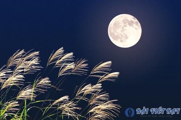 top 10 bai van mau ta canh dem trang dep dat diem cao moi nhat 2 - Top 10 bài văn mẫu tả cảnh đêm trăng đẹp đạt điểm cao mới nhất
