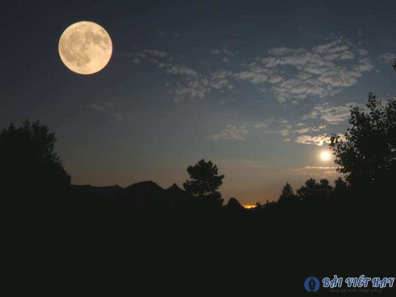 top 10 bai van mau ta canh dem trang dep dat diem cao moi nhat 4 - Top 10 bài văn mẫu tả cảnh đêm trăng đẹp đạt điểm cao mới nhất