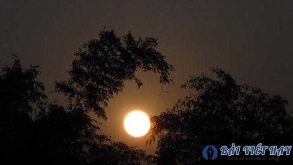 top 10 bai van mau ta canh dem trang dep dat diem cao moi nhat 6 - Top 10 bài văn mẫu tả cảnh đêm trăng đẹp đạt điểm cao mới nhất