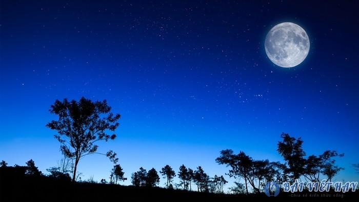 top 10 bai van mau ta canh dem trang dep dat diem cao moi nhat 8 - Top 10 bài văn mẫu tả cảnh đêm trăng đẹp đạt điểm cao mới nhất