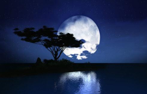 top 10 bai van mau ta canh dem trang dep dat diem cao moi nhat - Top 10 bài văn mẫu tả cảnh đêm trăng đẹp đạt điểm cao mới nhất