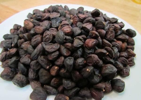 hat doi la gi 4 - Hạt dổi là gì? Có mấy loại hạt dổi? Cách sử dụng hạt dổi trong nấu ăn như thế nào?