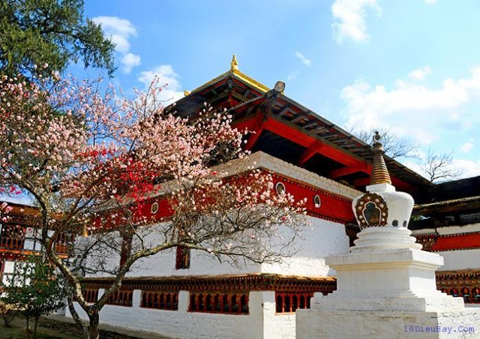 top 10 dia diem du lich dep noi tieng nhat o bhutan 4 - Top 10 địa điểm du lịch đẹp nổi tiếng nhất ở Bhutan