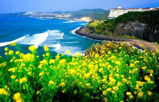 top 10 dia diem du lich dep noi tieng nhat o han quoc 2 - Top 10 địa điểm du lịch đẹp nổi tiếng nhất ở Hàn Quốc