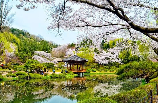 top 10 dia diem du lich dep noi tieng nhat o han quoc 3 - Top 10 địa điểm du lịch đẹp nổi tiếng nhất ở Hàn Quốc