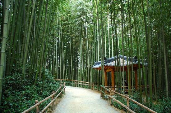 top 10 dia diem du lich dep noi tieng nhat o han quoc 8 - Top 10 địa điểm du lịch đẹp nổi tiếng nhất ở Hàn Quốc