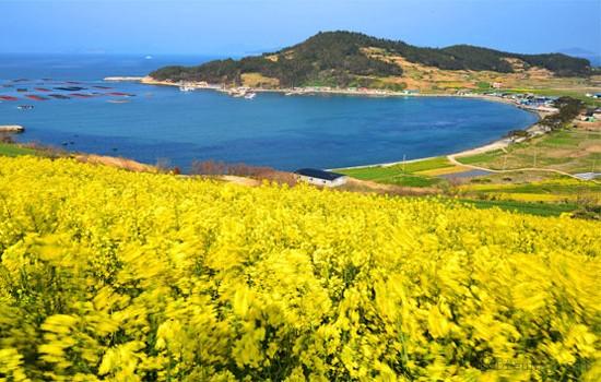 top 10 dia diem du lich dep noi tieng nhat o han quoc 9 - Top 10 địa điểm du lịch đẹp nổi tiếng nhất ở Hàn Quốc
