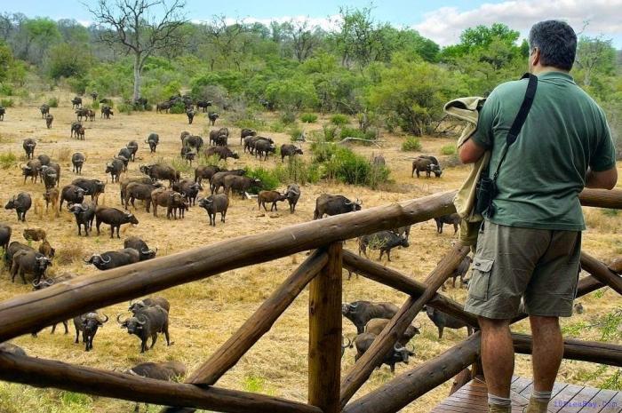 top 10 dia diem du lich dep noi tieng nhat o nam phi 1 - Top 10 địa điểm du lịch đẹp nổi tiếng nhất ở Nam Phi