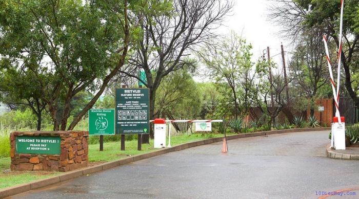 top 10 dia diem du lich dep noi tieng nhat o nam phi 5 - Top 10 địa điểm du lịch đẹp nổi tiếng nhất ở Nam Phi