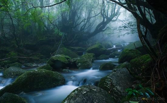 top 10 dia diem du lich dep noi tieng nhat o nhat ban 2 - Top 10 địa điểm du lịch đẹp nổi tiếng nhất ở Nhật Bản