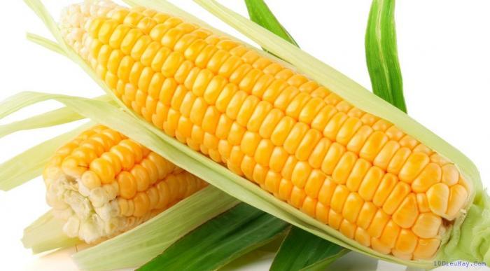 top 10 loai thuc pham tot nhat cho mat 9 - Top 10 loại thực phẩm tốt nhất cho mắt
