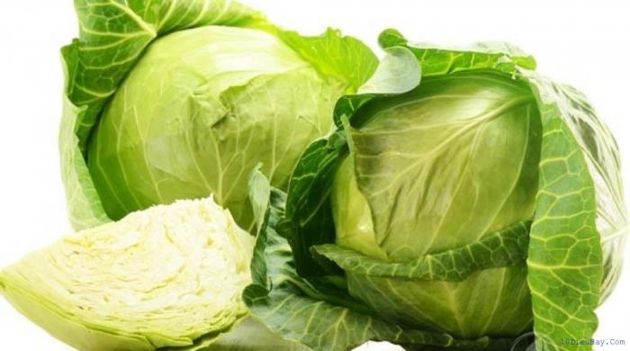 top 10 loai thuc pham tot nhat cho nguoi bi benh loang xuong 4 - Top 10 loại thực phẩm tốt nhất cho người bị bệnh loãng xương