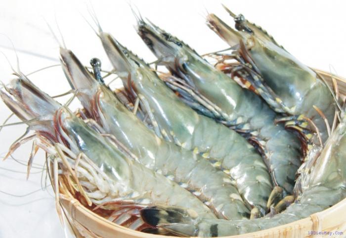 top 10 loai thuc pham tot nhat cho nguoi bi benh loang xuong 9 - Top 10 loại thực phẩm tốt nhất cho người bị bệnh loãng xương