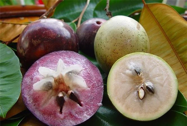 top 10 loai trai cay tot cho me sau sinh mo nen an 3 - Top 10 loại trái cây tốt cho mẹ sau sinh mổ nên ăn