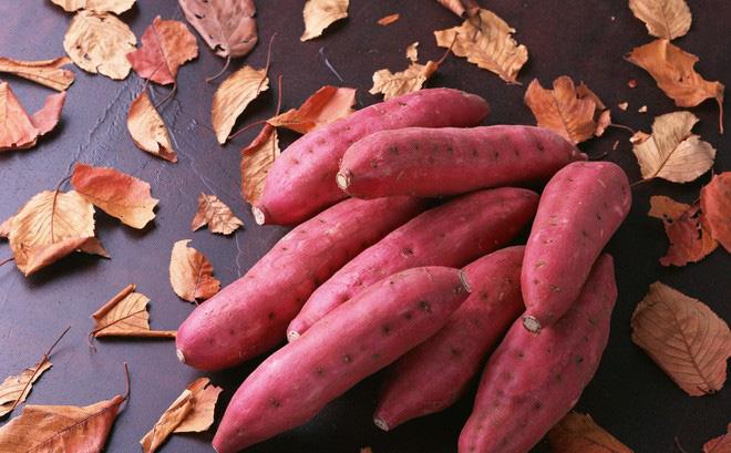 top 10 mon an cho ba bau de con thong minh khoe manh 8 - Top 10 món ăn cho bà bầu để con thông minh khỏe mạnh