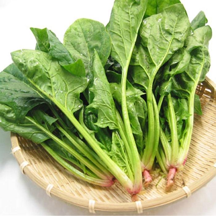 top 10 thuc pham giup thai nhi tang can nhanh 4 - Top 10 thực phẩm giúp thai nhi tăng cân nhanh
