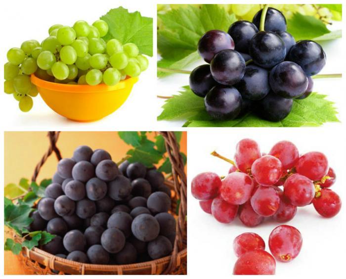 top 12 loai trai cay giup me bau giai nhiet ngay nong 10 - Top 12 loại trái cây giúp mẹ bầu giải nhiệt ngày nóng