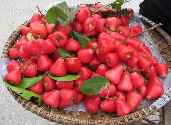 top 12 loai trai cay giup me bau giai nhiet ngay nong 11 - Top 12 loại trái cây giúp mẹ bầu giải nhiệt ngày nóng