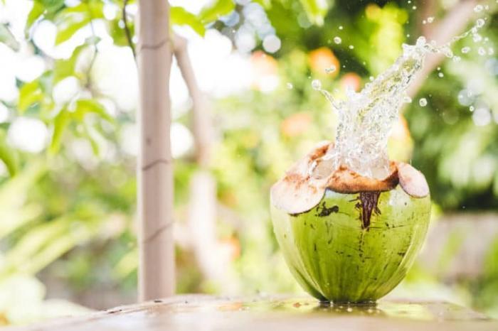 top 12 loai trai cay giup me bau giai nhiet ngay nong 5 - Top 12 loại trái cây giúp mẹ bầu giải nhiệt ngày nóng