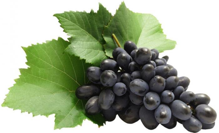 top 13 loai trai cay tot nhat cho ba bau 1 - Top 13 loại trái cây tốt nhất cho bà bầu