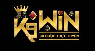 k9win 310x165 - K9Win Việt Nam - Thiên đường giải trí trực tuyến hàng đầu Châu Á
